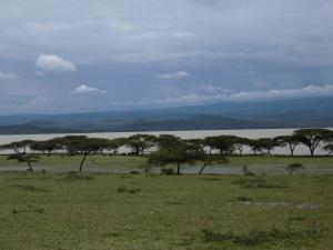 Autour du Lac Langano, août 2013