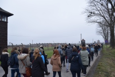 Marche silencieuse vers Auschwitz II - Birkenau