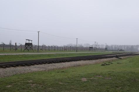 Auschwitz Birkenau, camp d'extermination