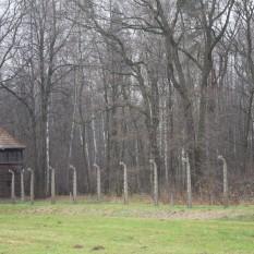 Auschwitz II - Birkenau, camp d'extermination
