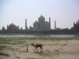 Taj Mahal, Agra, Uttar Pradesh, Inde