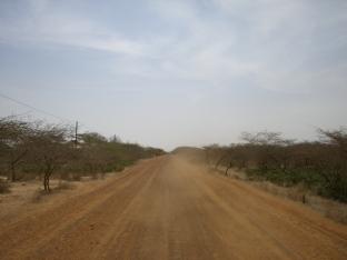 Route, proche Saint-Louis, Sénégal