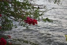 Bahar Dar, Lac Tana, Ethiopie
