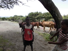 Lac Langano, vallée du Rift, Ethiopie