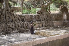 Bain de Fasilidas, Gondar, Ethiopie