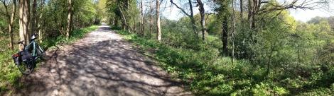 Cuckoo Trail