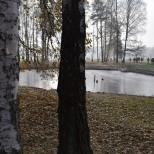Étang d'évacuation des cendres, Auschwitz-Birkenau