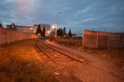 Première rampe, Auschwitz