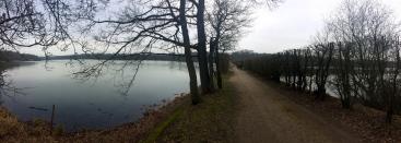 Étangs de Hollande, forêt de Rambouillet